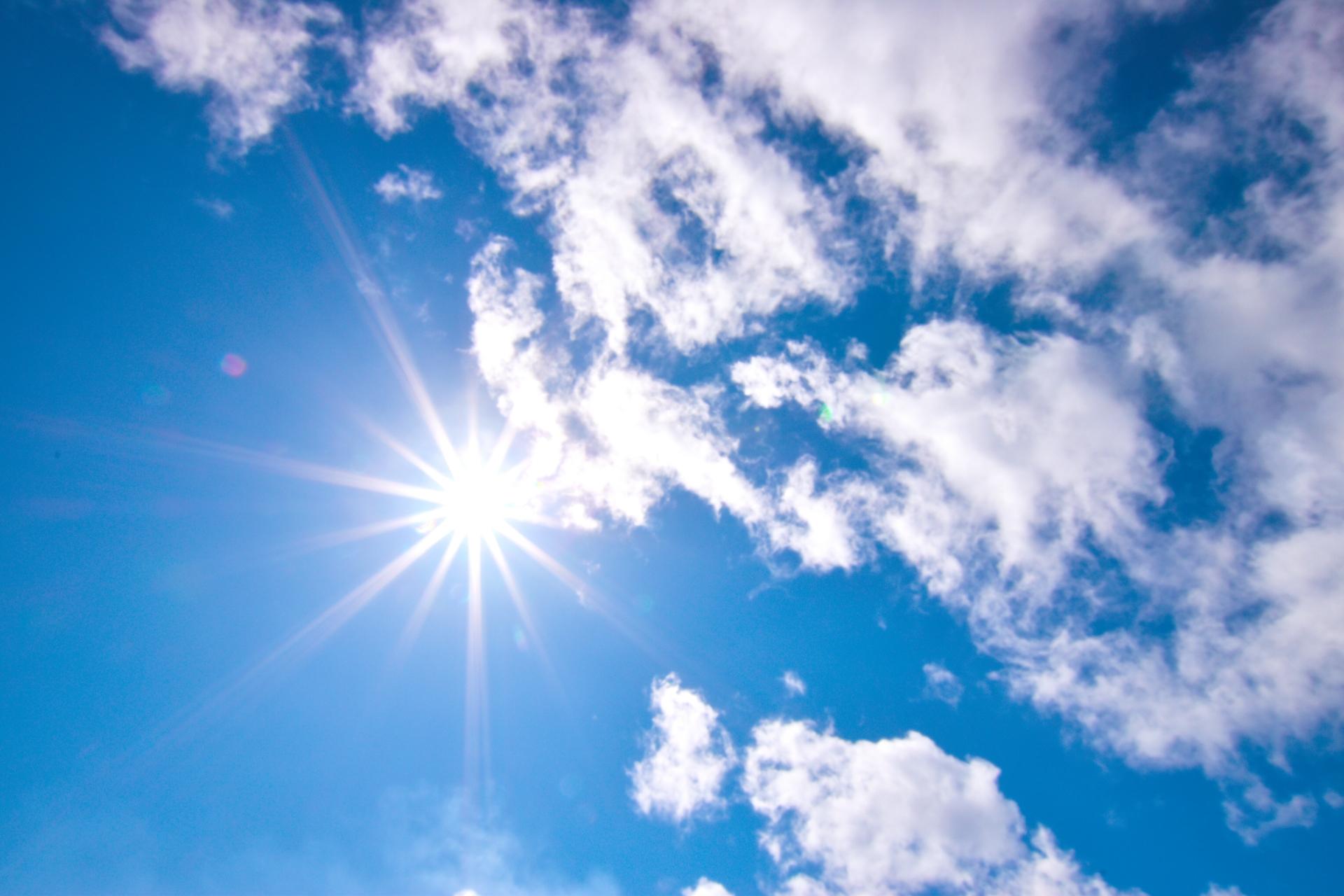夏場は車内温度に注意!効率的に温度を下げる方法を紹介 | マジオ ...